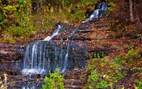 autunno, cascata, cascata, alberi, natura