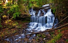 otoño, cascada, cascada, árboles, naturaleza