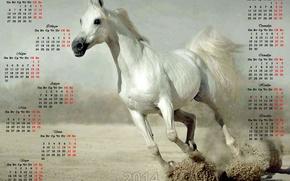 calendar, 2014, Calendar 2014, year of the horse