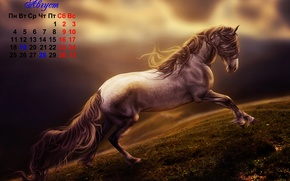 Calendars, 2014, year of the horse