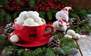 快乐, 节假日, 快活, 圣诞节, 新, 年