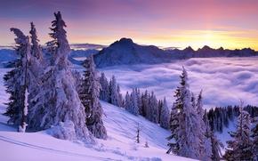 восход, закат, горы, снег, ели, туман