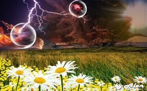 lightning, field, Flowers, 3d, art
