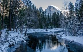 Yosemite National Park, река, деревья, горы, пейзаж
