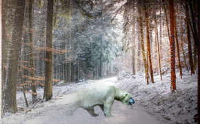 winter, forest, trees, polar bear, HDR, photoshop