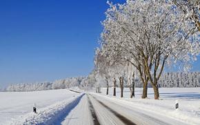 зима, деревья, дорога, пейзаж