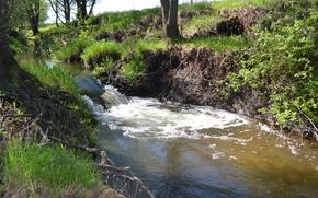 estate, caldo, piccolo fiume