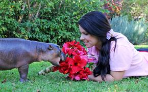 Hippo mangia bellissimi fiori, ha fatto anche