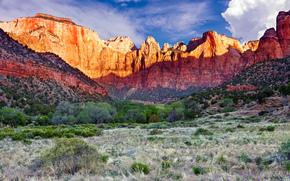 Parco nazionale di Zion, USA, Montagne, paesaggio