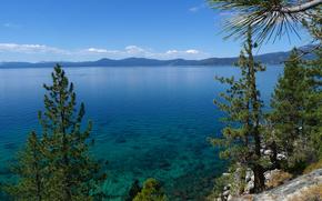 Tahoe, lac, arbres, paysage