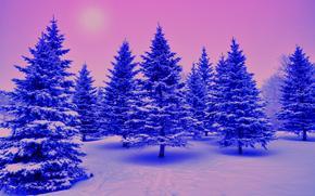 зима, деревья, ели, снег, пейзаж