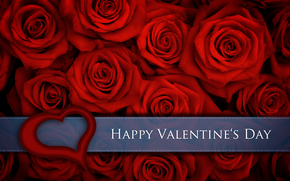 nature, flowers, flower, red, roses, happy, valentine's, day