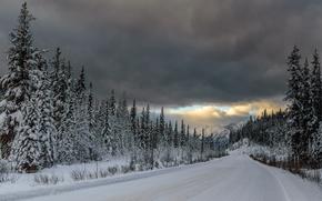 зима, снег, тучи, лес, дорога, ели, горы
