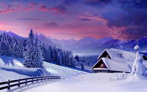 冬天, 日落, 树, 家, 景观