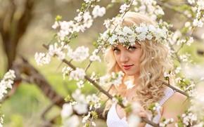 girl, Flowers, garden