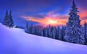 natura, domestico, inverno, nevicata, cielo, paesaggio, natura, inverno, cielo, bianco, bella, fresco, bello, paesaggio, scenario, nevicata, abitazione, tramonto