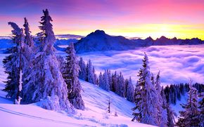 зима, горы, ели, деревья, снег, туман, облака, небо, природа