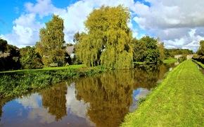 channel, bridge, trees, home, England