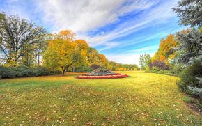 autunno, alberi, parco, aiuola, paesaggio