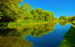 channel, trees, landscape