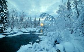 winter, small river, nature, trees, landscape