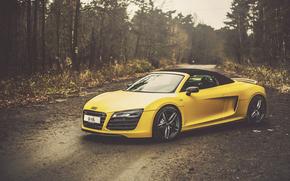 Audi, R8, Ауди, желтая, классная