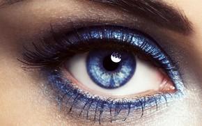 глаз, бровь, ресница