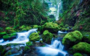 Elowah Falls, Oregon, waterfall, stones, moss, nature