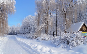 weg, hiver, Schnee, wald