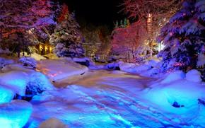 惠斯勒村, 圣诞节, 冬天, 树, 花环