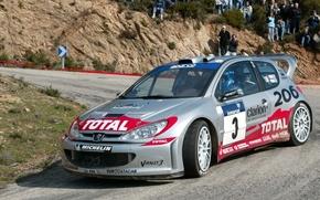 WRC, 206 Peugeot, 2002