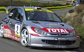 WRC, Peugeot 206 2001, Rally