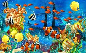 океан, морское дно, рыбы