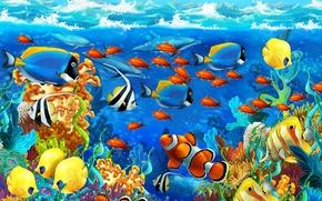 海洋, 海底, 鱼
