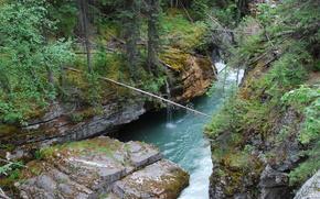Fluss, Rocks, Wald, Wasserfall, Natur