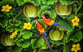 попугаи, 3d, art