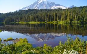 lac, forêt, Montagnes, paysage