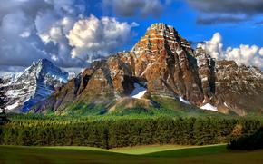 горы, лес, поле, пейзаж