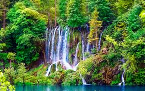 лес, деревья, водопад, пейзаж