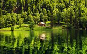 лес, озеро, домик, пейзаж