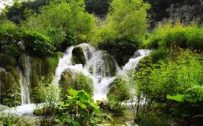 cascata, piccolo fiume, alberi, natura