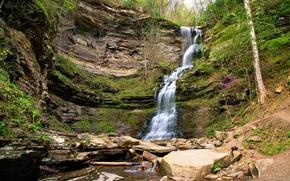 Wasserfall, Steine, Rocks, Bäume, Natur