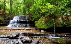 潆, 瀑布, 树, 岩石, 石头, 桥, 性质