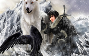 lupo, guerriero, raven, fantasia