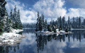 зима, река, ели