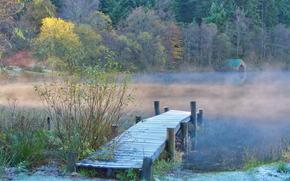 озеро, туман, мостик, лес, деревья, домик, пейзаж