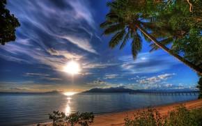 sunset, tropics, sea, Palms, shore, landscape