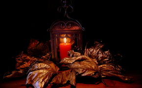 candle, foliage, still life