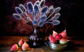 vaso, piante, pere, ancora vita
