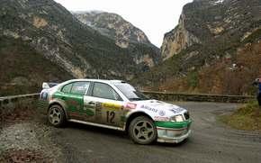 2001, WRC, rally monte-carlo, Skoda